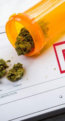 """Medical Marijuana Laws: """"Part 2"""""""