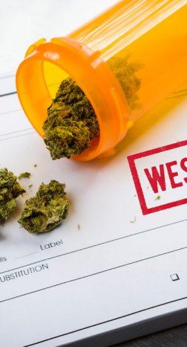 "Medical Marijuana Laws: ""West Virginia"""