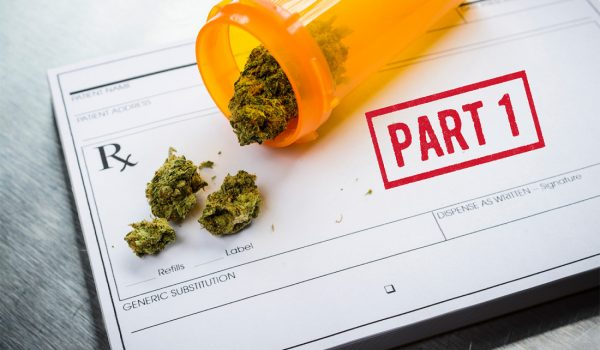 "Medical Marijuana Laws: ""Part 1"""