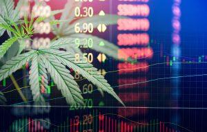 Business Marijuana Hemp Leaves Cannabis Stock Exchange Market