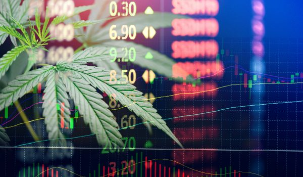 Business Marijuana Hemp Leaves Cannabis Stock Exchange Market