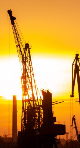 Silhouette of crane during sunset